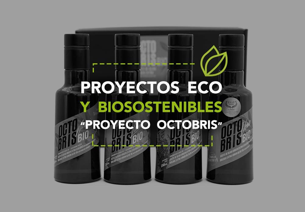 Proyectos eco