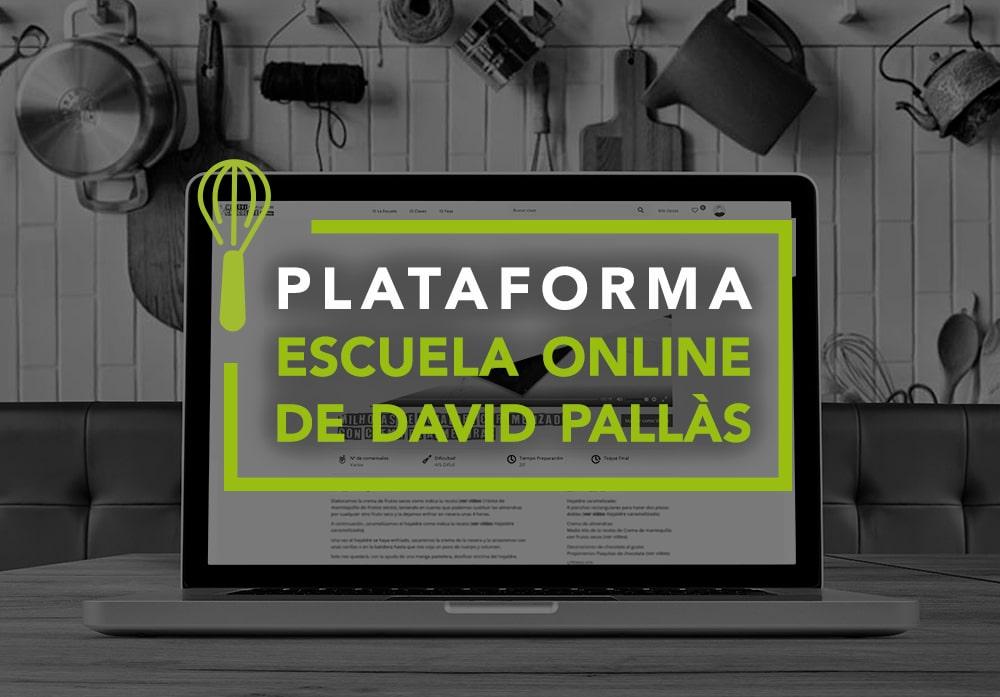 Plataforma escuela online